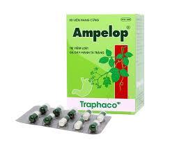 Thuốc ampelop traphaco là thuốc gì? có tác dụng gì? giá bao nhiêu tiền?