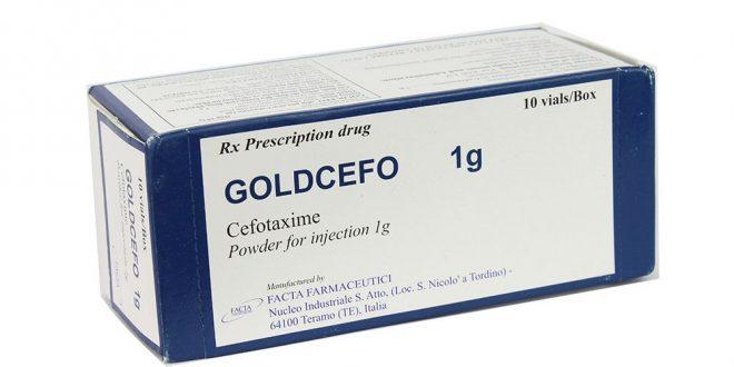 Thuốc goldcefo 1g là thuốc gì? có tác dụng gì? giá bao nhiêu tiền?