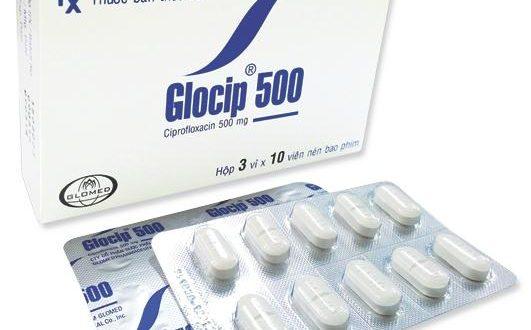 Thuốc glocip 500 là thuốc gì? có tác dụng gì? giá bao nhiêu tiền?