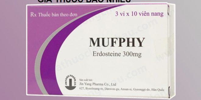 Thuốc mufphy 300 là thuốc gì? có tác dụng gì? giá bao nhiêu tiền?