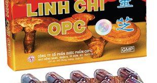 Linh chi OPC là thuốc gì? có tác dụng gì? giá bao nhiêu tiền?