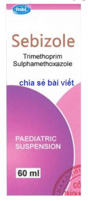 Thuốc Sebizole 60ml là thuốc gì? có tác dụng gì? giá bao nhiêu?
